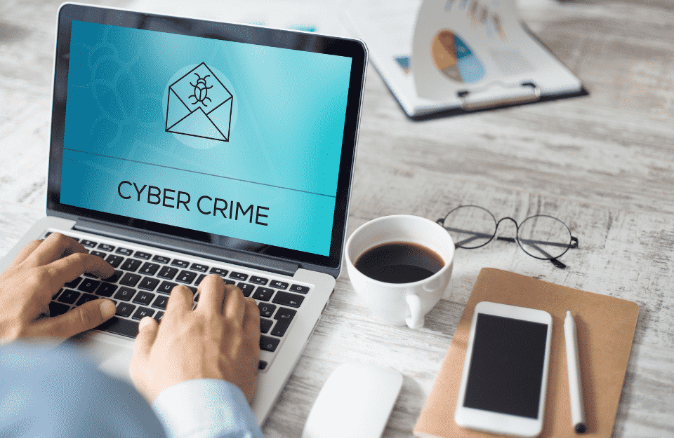 Cyber Warfare and Cyber Crime Assault Bussinesses